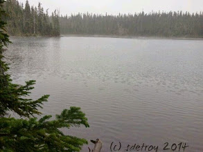 Photo: Grateful for rainy hikes.