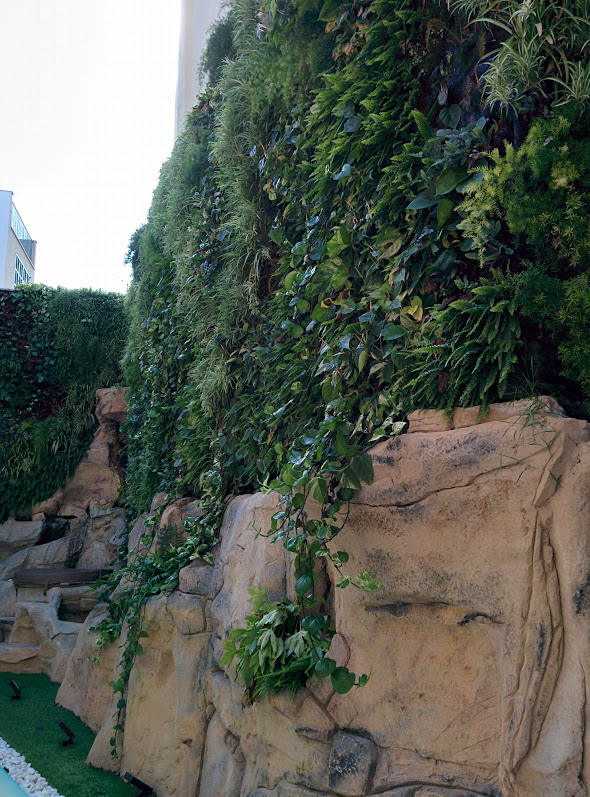 Greenwall in Mallorca Jardines verticales en Mallorca