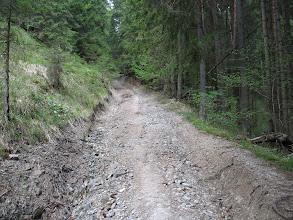 Photo: 06.Podejście w lesie.