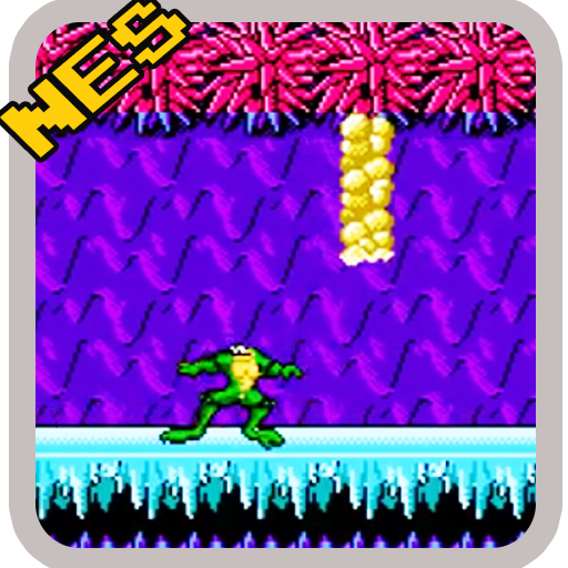 Battle toads Fighter Classic Game