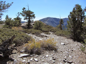 Photo: From the summit of Pine Mt. looking south