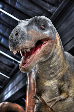 Photo: T-Rex, Museum of Natural Science, Sugar Land, TX