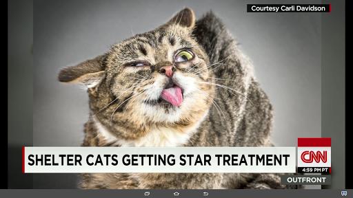 CNN for Samsung Galaxy View  screenshots 4