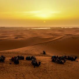 In anticipation of sunrise by Joško Šimic - Landscapes Deserts ( maroko, sunrise )