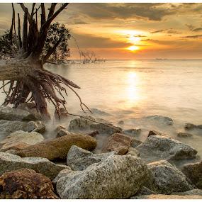 pantai kelanang Morib by Coolvin Tan - Landscapes Sunsets & Sunrises