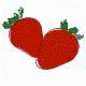 Download Fruits Arrange For PC Windows and Mac