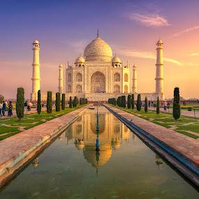 Taj Mahal by Joyce Chang - Buildings & Architecture Public & Historical ( sunrise, tomb, agra, monument, india, travel, taj mahal )