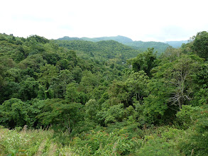 Photo: road Mae Sariang to Chiang Mai - green valleys without agricultural fields