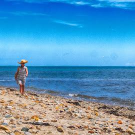 New England Summer by Alan Roseman - Landscapes Beaches ( new england, atlantic ocean, westport, korean, asian,  )