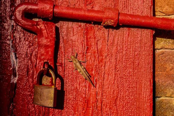 Cancello rosso