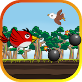 Bird Runner in Deadly Forest