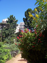 Photo: We visited the Botanical Gardens whiling away the time before our redeye home