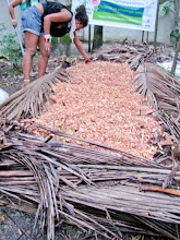 Photo: Oficina teórica/prática - Revolução dos Baldinhos e a compostagem termofílica (Cúpula dos Povos)