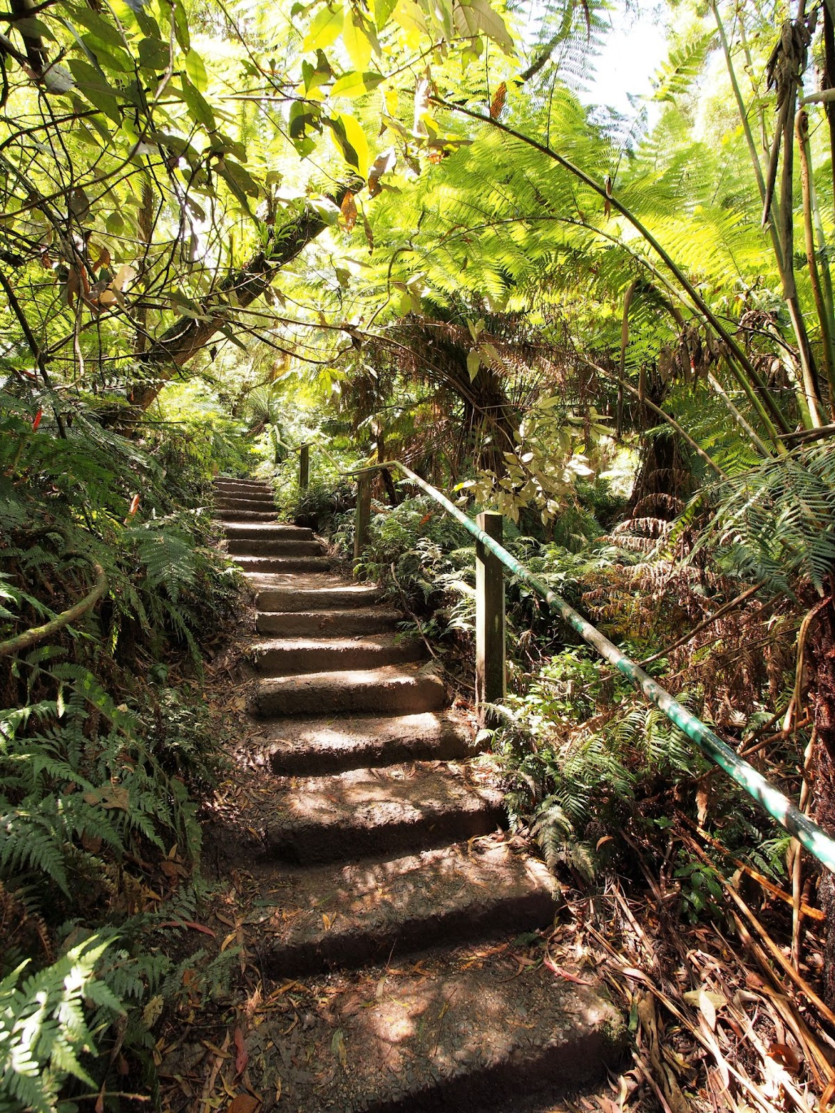100 things to do in melbourne with kids 1000 steps kokoda trail