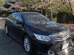 カムリ AVV50 のカスタム事例画像 みぃすけさんの2020年04月19日19:20の投稿