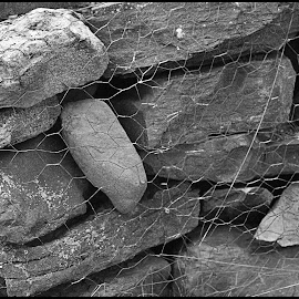 Rocks Up Close by Lorraine D.  Heaney - Nature Up Close Rock & Stone