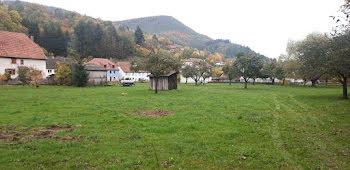 terrain à Rombach-le-Franc (68)