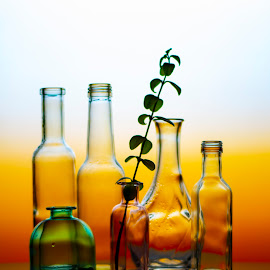bottles by Enver Karanfil - Artistic Objects Still Life ( orange, leaves, reflection, color, bottles, still life )