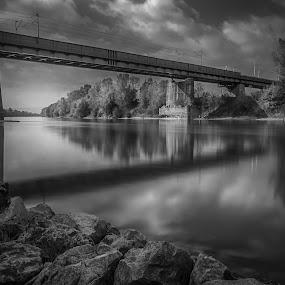 Bridge over the river Sava in Zagreb, Croatia by Dražen Škrinjarić - Landscapes Waterscapes ( reflection, tree, white, bw, croatia, trees, bridge, zagreb, stones, rocks, black, river,  )