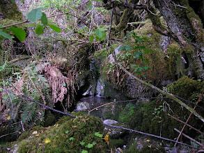Photo: The Seven Streams