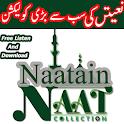 Naats Mp3 icon