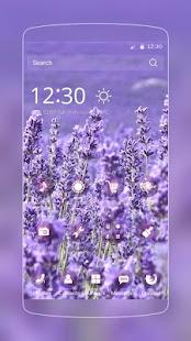 Jarní fialová levandule - náhled