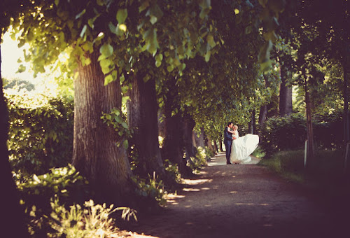 Hochzeitsfotograf Chemnitz (richardlehmann). Foto vom 04.06.2015