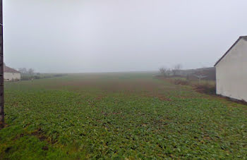 terrain à Bellechaume (89)