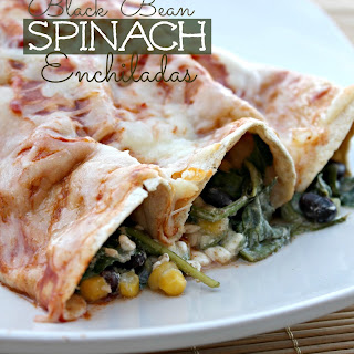 Healthy Spinach Enchiladas Recipes