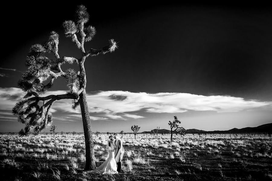 Wedding photographer Cristiano Ostinelli (ostinelli). Photo of 11.07.2016