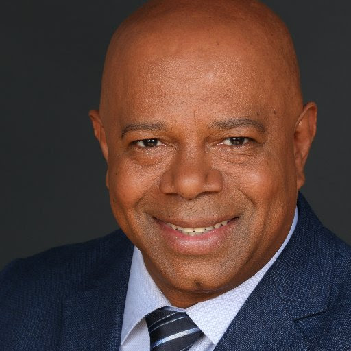 David Webb: 'Anti-Trump, Anti-Americans' out to destroy the president