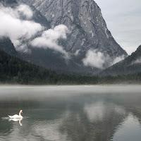 Lago di Dobbiaco di