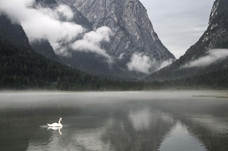 Lago di Dobbiaco di si