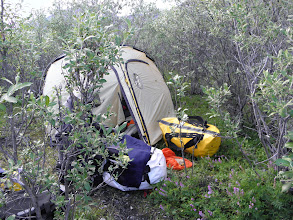 Photo: Camp 7/12 – By the river in the bushes. It was 2 km walk from Duo Lakes. Easy to find way, but not very easy terrain. Latitude: 64.510317° N Longitude: 132.087776° W