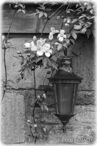 Photo: #monochromemonday curated by +Charles Lupica +Manuel Votta +Hans Berendsen +Jerry Johnson +Steve Barge   Cottage Welcome  #blackandwhitephotography +Monochrome Monday