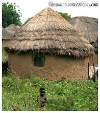 Photo: Village sur la route de Mole national parc, Ghana