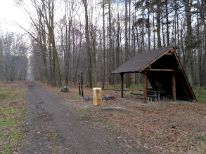 Photo: Odpočívka v lese Důlňák, u cyklotrasy č. 6064