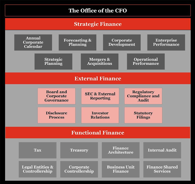 Figure 1: Office of the CFO – Scope of responsibilities