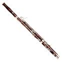 Virtual Bassoon
