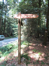 Photo: Remontez tout droit à travers bois jusqu'à atteindre le pied du rocher environ 150m.