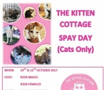 SPAY AND NEUTER WEEKEND  : The kitten cottage