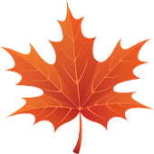 3D Autumn Maple Leaves