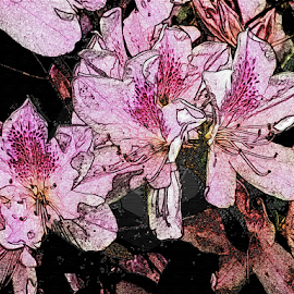 Pink Flowers by Edward Gold - Digital Art Things ( digital photography, pink flowers, light pink, pattern, decorative, digital art,  )