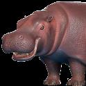 Hippo 3D icon