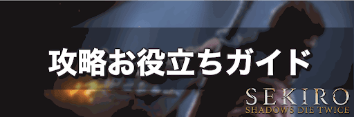 SKEIRO_攻略ガイド