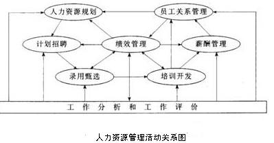 人力资源管理活动关系图