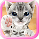 3D Cute Cat Live Wallpaper (app)