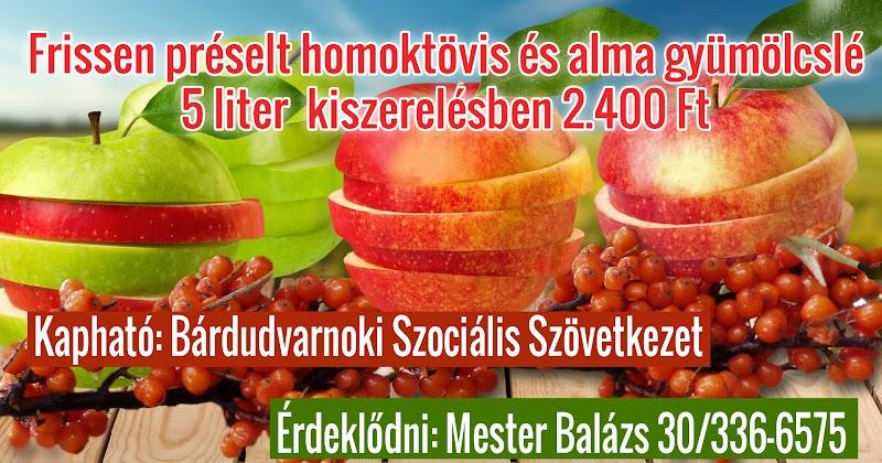 Homoktövis és alma friss gyümölcslé 2016