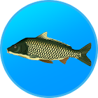 True Fishing. Fishing simulator icon