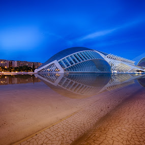 City of Arts and Sciences by Sander Monster - Buildings & Architecture Architectural Detail